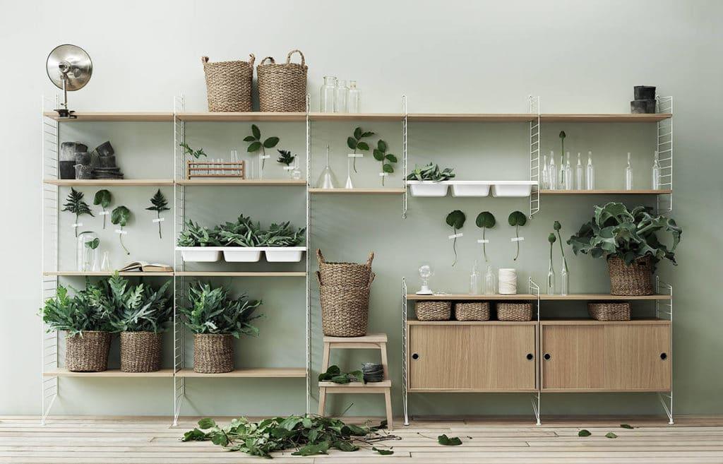 String-blanc-clair-plantes