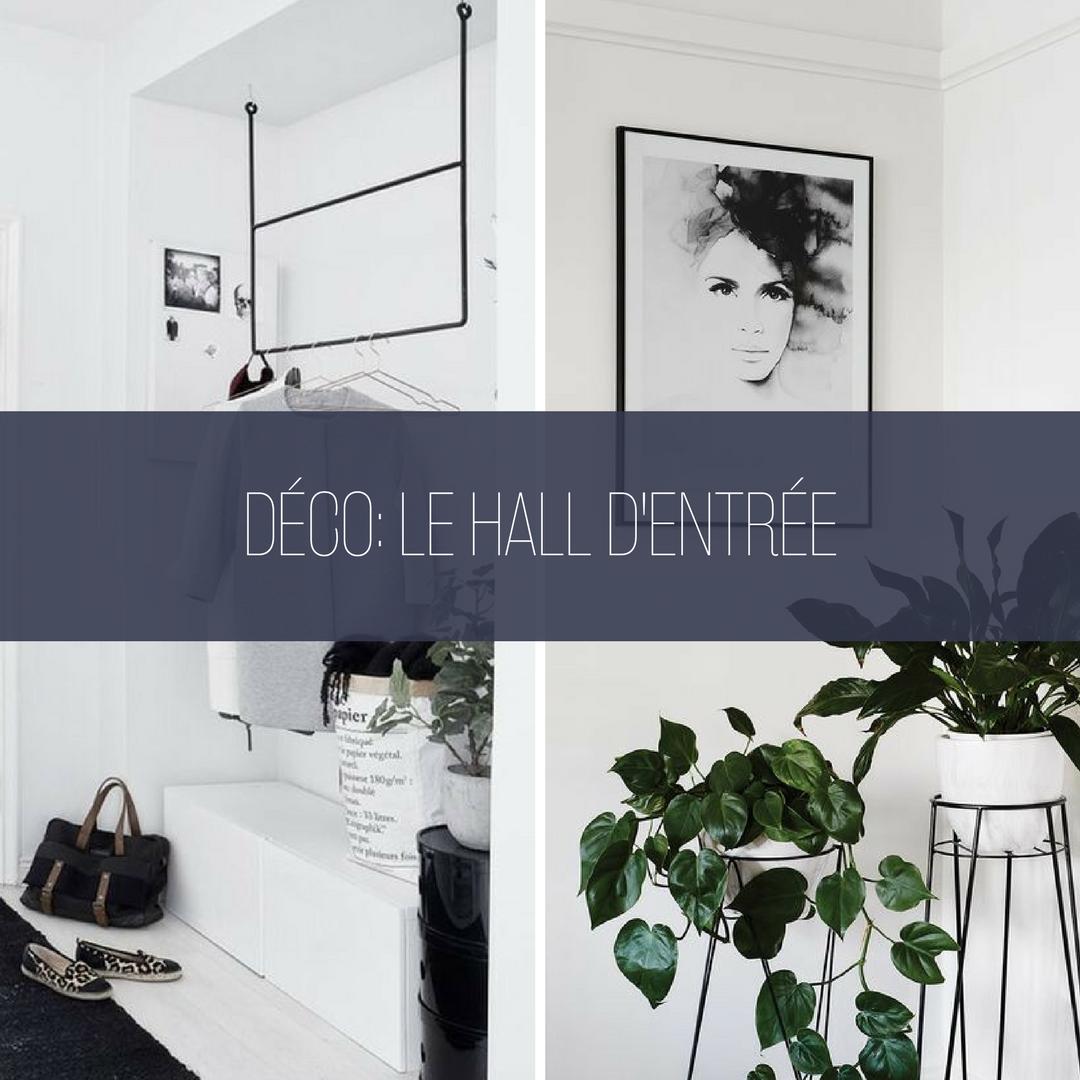 Décoration Petite Entrée Appartement comment aménager et décorer un hall d'entrée joli et